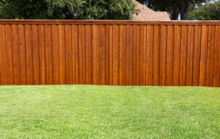 Stain on Fence